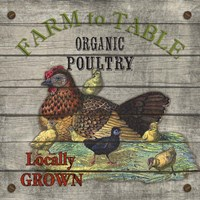 Farm to Table - Poultry Fine Art Print