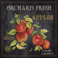 Orchard Fresh Apples Fine Art Print