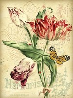 French Florals 2 Fine Art Print