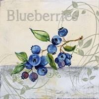 Tutti Fruiti Blueberries Fine Art Print