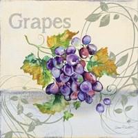 Tutti Fruiti Grapes Fine Art Print