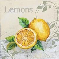 Tutti Fruiti Lemon Fine Art Print