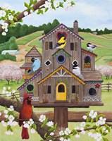 Bird Condo Fine Art Print