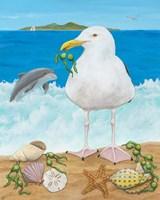 Gull Envy Fine Art Print