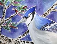 Blue Jay Way Fine Art Print