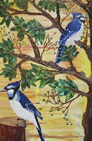 Monica's Jays Fine Art Print