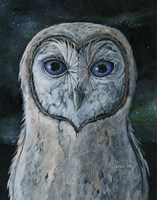 Barn Owl III Fine Art Print