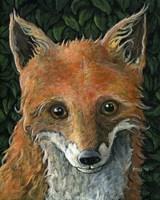 Little Fox II Fine Art Print