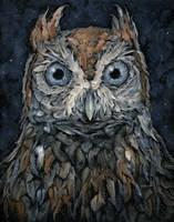 Screech Owl Fine Art Print