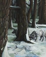 The Wolves Fine Art Print