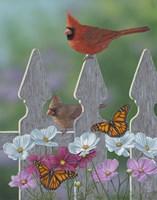 Royalty Cardinals Monarchs Framed Print