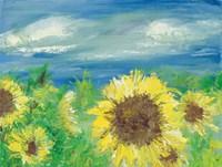 Eastern Plains Sunflower Fine Art Print