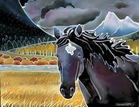 Black Horse At Night Fine Art Print