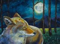 Coyote Moon Fine Art Print