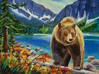 Golden Bear Fine Art Print