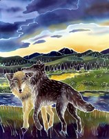 Sunrise At Slough Creek Fine Art Print