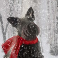 Scotty Dog Red Scarf Fine Art Print