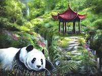 Shen Fine Art Print
