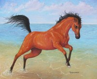 Horseplay Fine Art Print