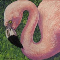 Flamboyant Flamingo Fine Art Print