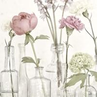 Flowers in Bottles Still Life Fine Art Print