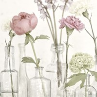 Flowers in Bottles Still Life Fine Art Print