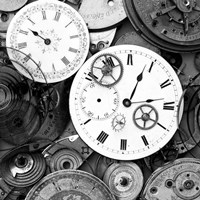 Pieces of Old Watch BW Fine Art Print