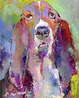 Art Basset Hound Fine Art Print