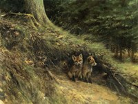 Fox Cubs Fine Art Print