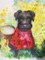 Zverg Schnauzer Dog Fine Art Print