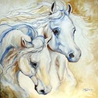 Arabian Eccense Fine Art Print