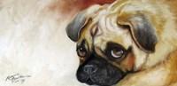 Cutie Pie Pug Fine Art Print