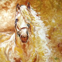 Golden Grace Andalusian Equine Fine Art Print