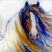 Gypsy Vanner Rouge Fine Art Print
