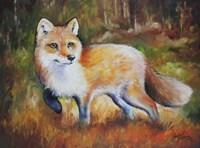 Little Red Fox Fine Art Print