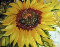 Sundown Sunflower Fine Art Print