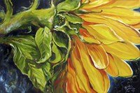 Sunflower Abstract Fine Art Print