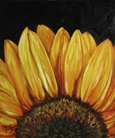Sunflower Sunflower Fine Art Print