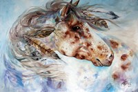 Thunder Appaloosa Indian War Horse Fine Art Print