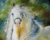 White Cloud The Andlusian Stallion Fine Art Print