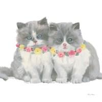 Cutie Kitties VIII Framed Print
