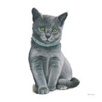 Cutie Kitties VI Framed Print