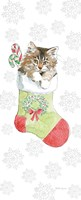 Christmas Kitties IV Snowflakes Fine Art Print