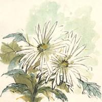Snowmum III Fine Art Print