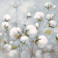 Cotton Field Blue Gray Crop Fine Art Print