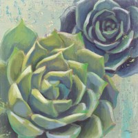 Succulents I Crop Fine Art Print
