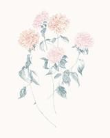 Flowers on White VI Contemporary Fine Art Print