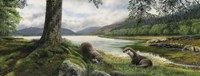 Otters Fine Art Print