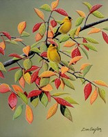 Backyard Goldfinches Fine Art Print