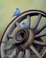 Simply Blue Fine Art Print